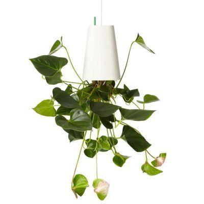Du suchst noch ein Geschenk für einen Pflanzen-Fan? Der Sky Planter in groß wird für ebenso große Augen sorgen – denn mit ihm hängt die Pflanze kopfüber von der Decke. via: www.monsterzeug.de