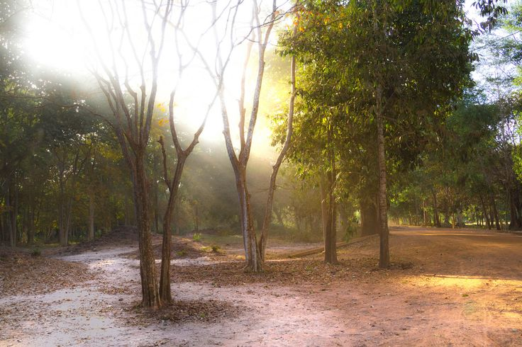 Sambor Prei Kuk (par Lawrence Murray). En savoir plus: http://voyager-au-cambodge.com/sites-a-visiter/kompong-thom