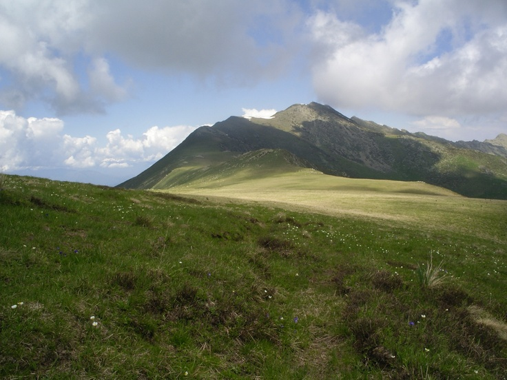 The Ligurian Alps in Parco Naturale Alta Valle Pesio e Tanaro, Piedmont Region of Italy