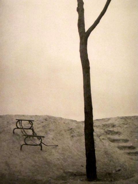 Man Ray  Waste Land(Terrain Vague)  1929