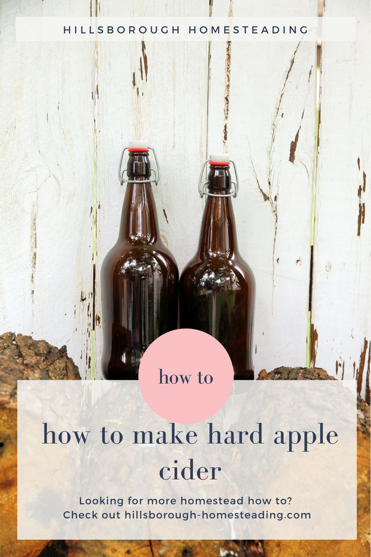 Easy to make hard apple cider recipe. Make the best of Fall Fermentation with either your own apples, or store bought apple cider. Click the image to find out how. | Hillsborough Homesteading