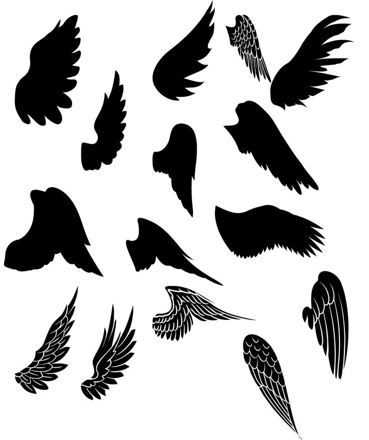 Wings! ~ KLDezign SVG