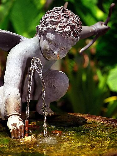 New Orleans - French Quarter Angel In Fountain