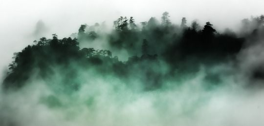 In the clearing mist Earl Lundquist