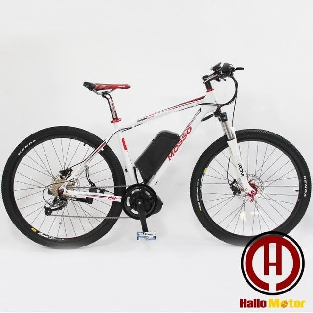29 inch 26 inch 48 v, 750 w eight fun Mid - Drive Motor eBike electric mountain bike high-power electric bicycle smart