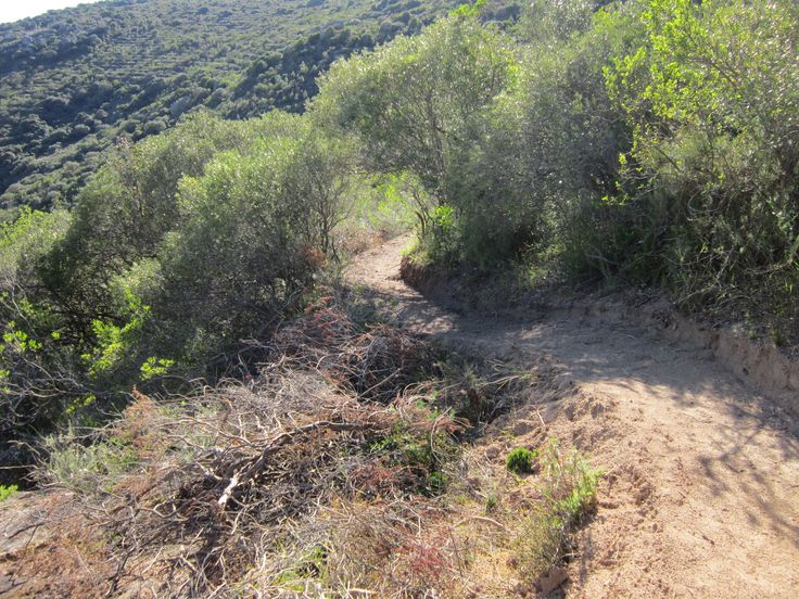 Rheboksloof MTB Single Track #proepaarl #adventure