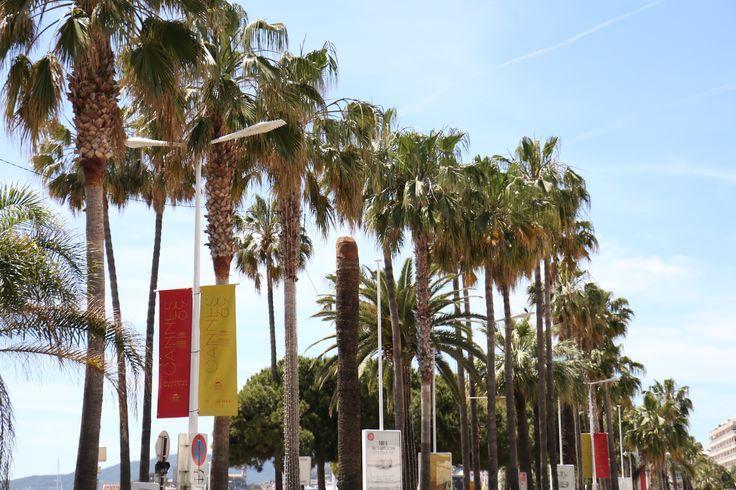 [69e Festival de Cannes] : Jours 9 et 10