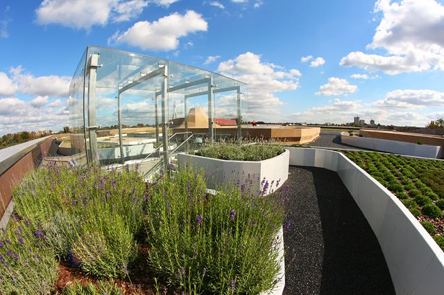 Garden on the rooftop : Copernicus Science Centre