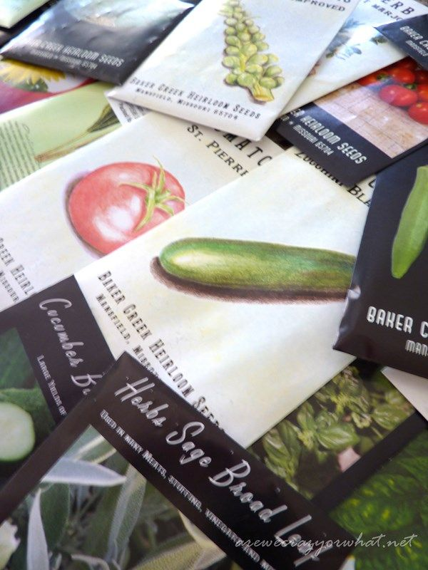 """The """"Dirt"""" on Seeds: A Prepper's Guide to Buying Seeds"""
