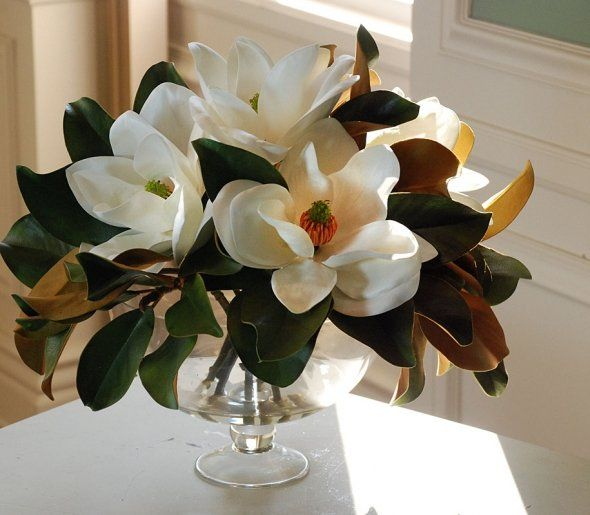 All southern women must keep a vase of fresh magnolias on their coffee table at all times