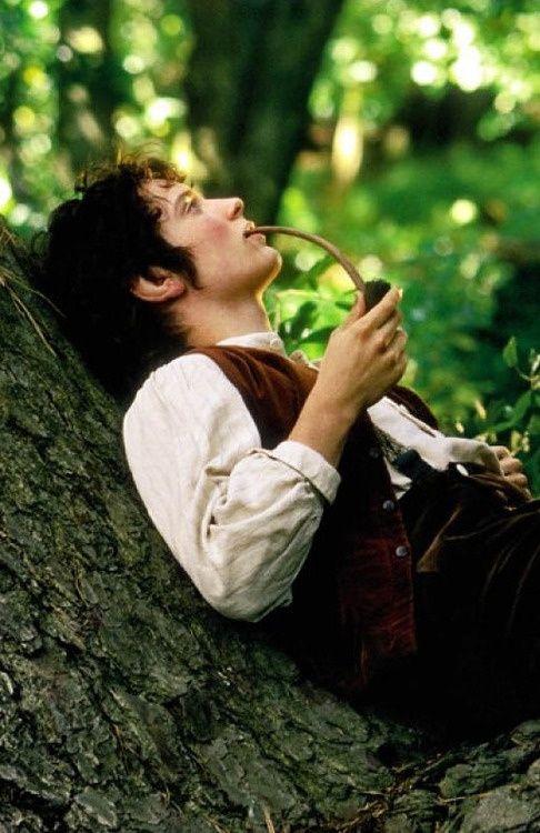 Frodo Baggins.