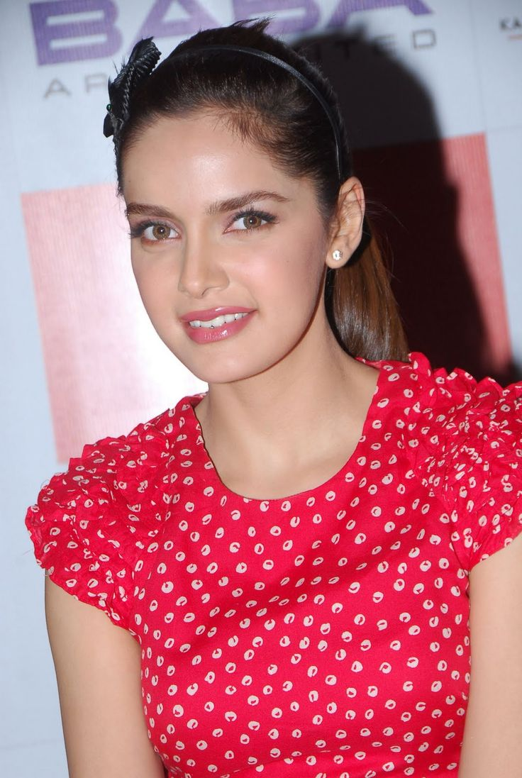Bollywood actress Shazahn Padamsee pictures, latest pics of Shazahn Padamsee, hot Shazahn Padamsee photos, new Shazahn Padamsee images, recent Shazahn Padamsee wallpapers gallery,  picture of Shazahn Padamsee, Shazahn Padamsee in sarees photoshoot and Shazahn Padamsee navel photo shoot in 2013 for facebook, google plus + and myspace.
