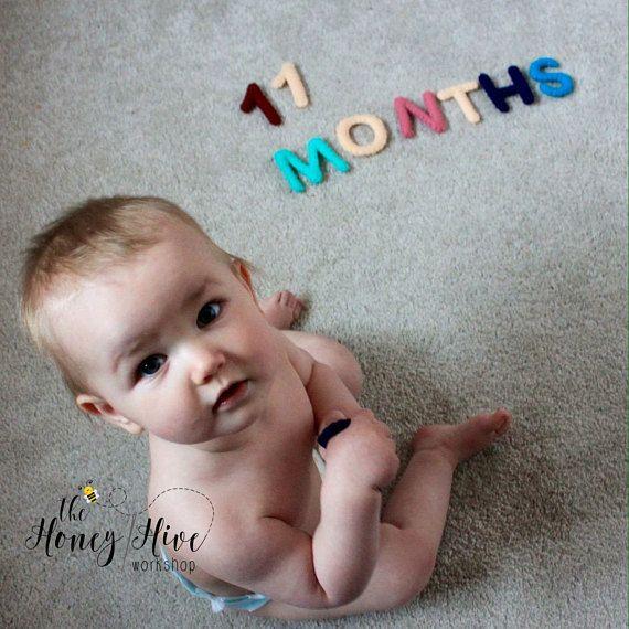 Baby milestones pregnancy updates monthly updates felt