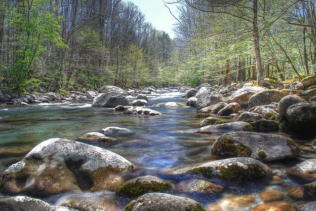 1000 images about fly fishing on pinterest fly fishing for Fly fishing smoky mountains