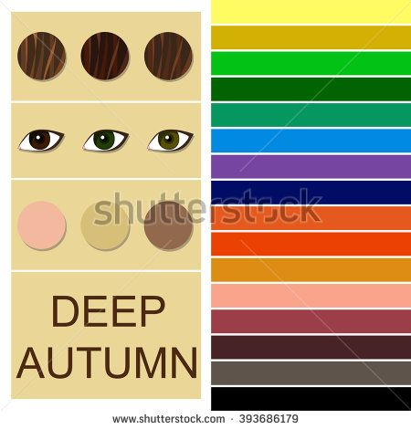 stock-vector-stock-vector-seasonal-color-analysis-palette-for-deep-autumn-type-type-of-female-appearance-393686179.jpg (450×470)