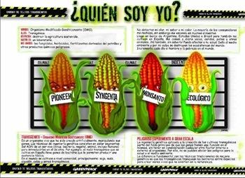 Alimentos Transgenicos! El Dedo en la Llaga..... Transgenic Foods! Very, very educational.