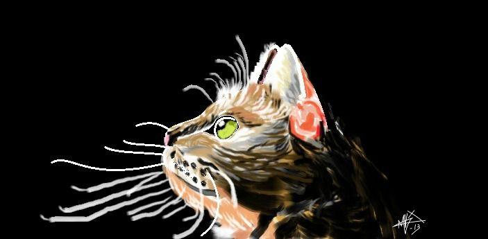 Un gato realizado íntegramente en paint