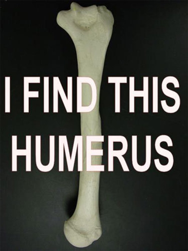Man, I totally find that totally humerus
