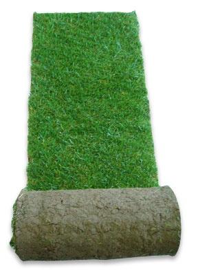 Turf Suppliers, Lawn Turf, Turf Supplies, Turf Care