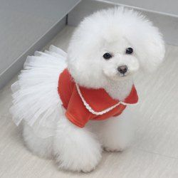 Pet Supplies Best Value Grooming Online At Whole Prices Sammydrees