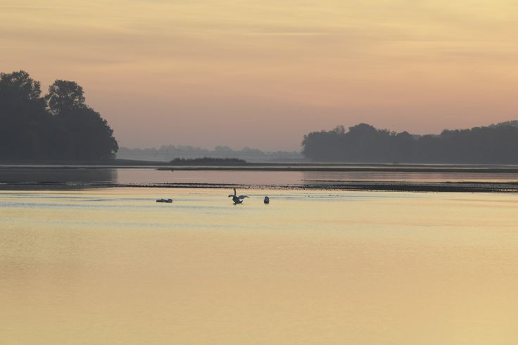 Paysage de Loire - Photo YLB