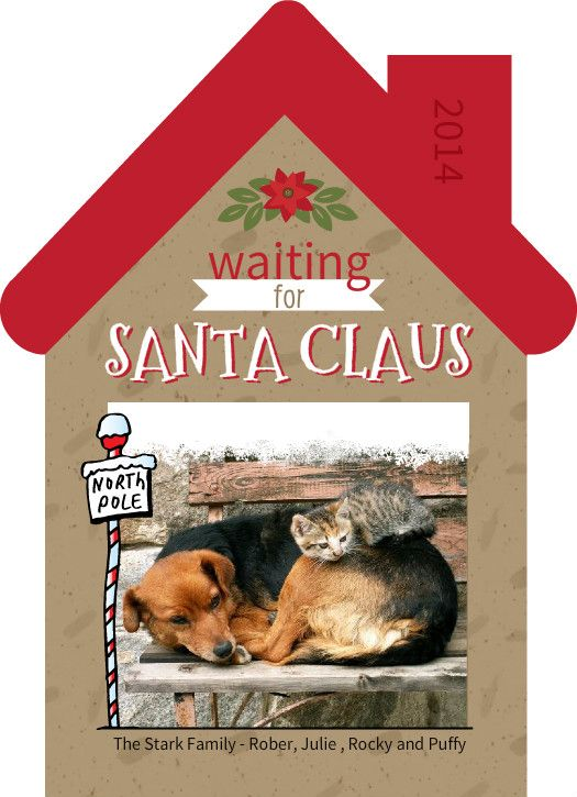 Holiday Card Sayings: Cat, Dog, Funny, Family, Religious Themes & More! Holiday photo card by PurpleTrail.com. #christmas #christmascards #holidaycards #holidaycardsayings #holidaycardwording