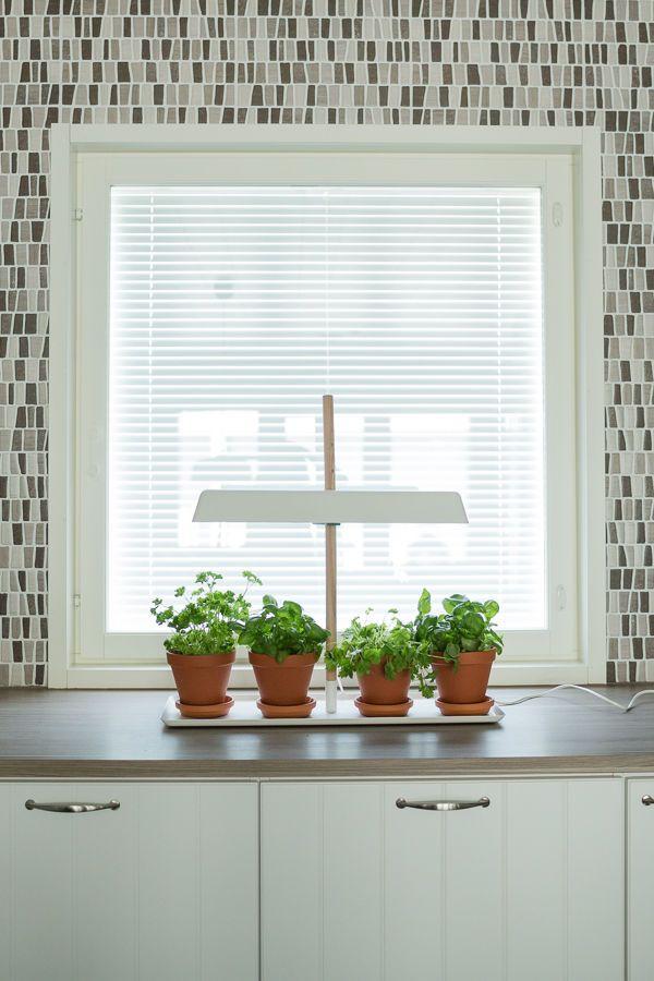 Vierasblogi: Asuntomessutalo HauHaus ja sisustuksen tärkeät värit - Elämäni Koti