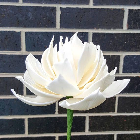 Large Sugar Water Lily Cake Topper  The Victoria