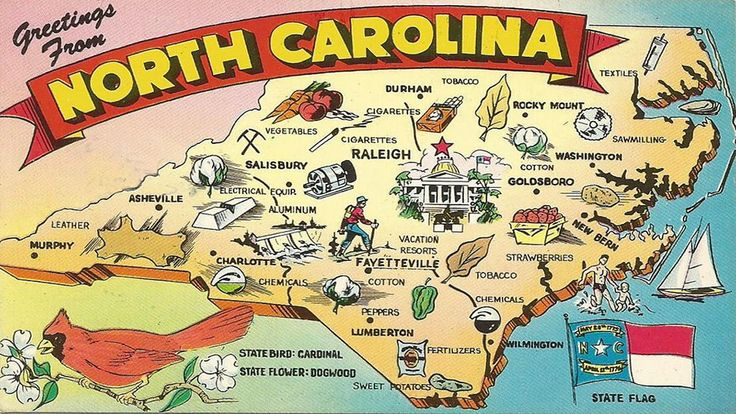48 Signs You're From North Carolina 47. Would be good tattoo quote with dogwood