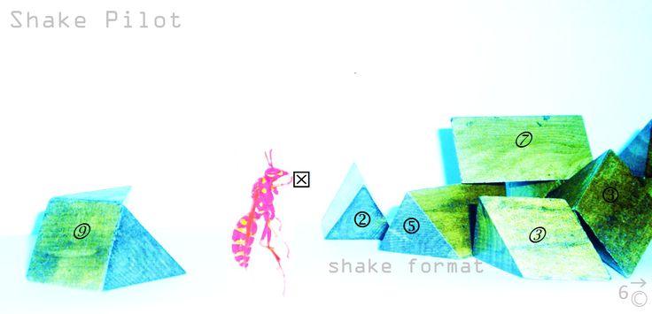 shake format