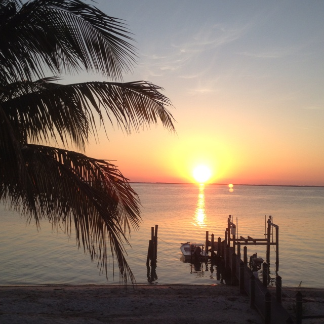 Captiva Island: 1000+ Images About North Captiva On Pinterest