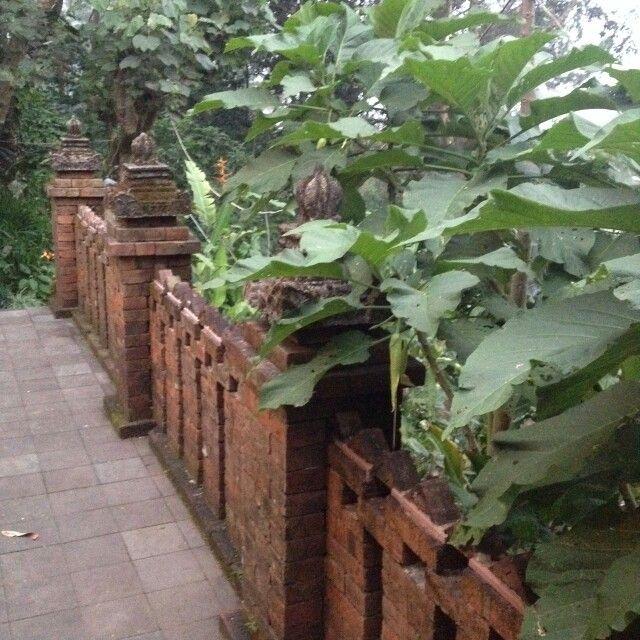 The garden..