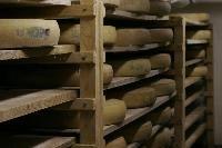 Lait cru, thermisé, pasteurisé ?..... La différence ! Les conseils et informations de la fromagerie Martin, vente de fromages en ligne dans ...
