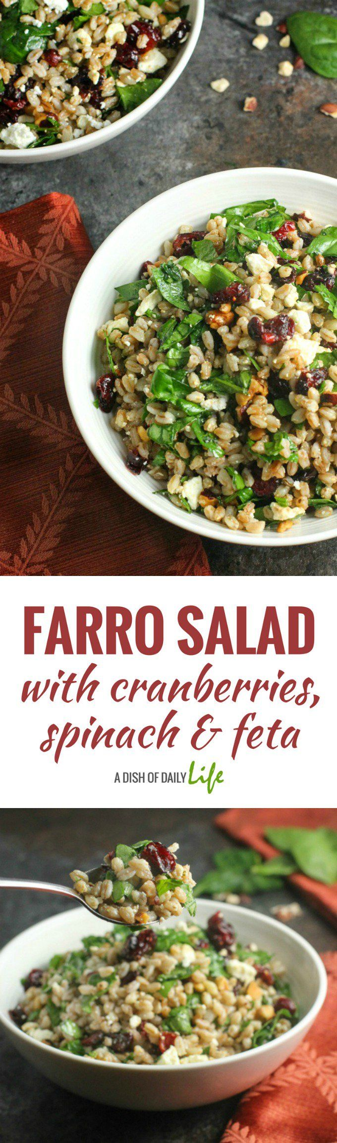Healthy and delicious, this easy Farro Salad with spinach, cranberries and feta, topped with balsamic dressing, is a wonderful addition to your menu any time of year. #salad   #farro   #sidedishes