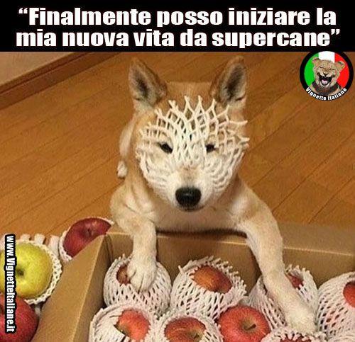 Vignette Italiane