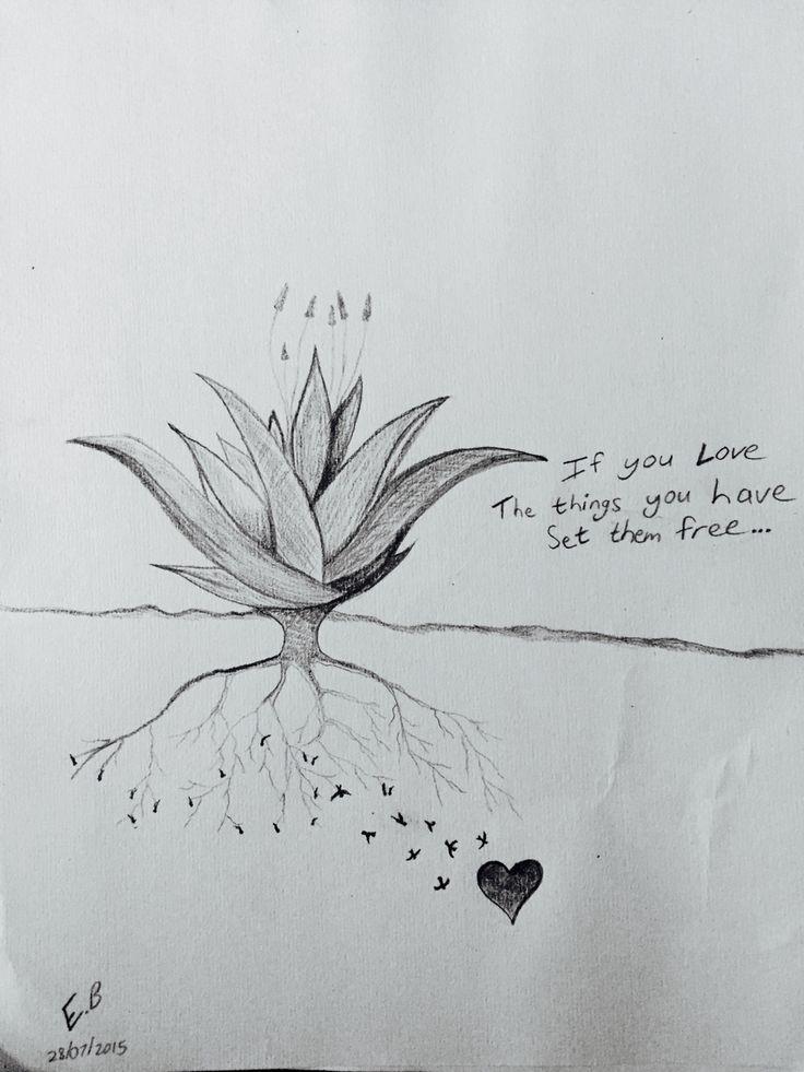 If you love something set it free
