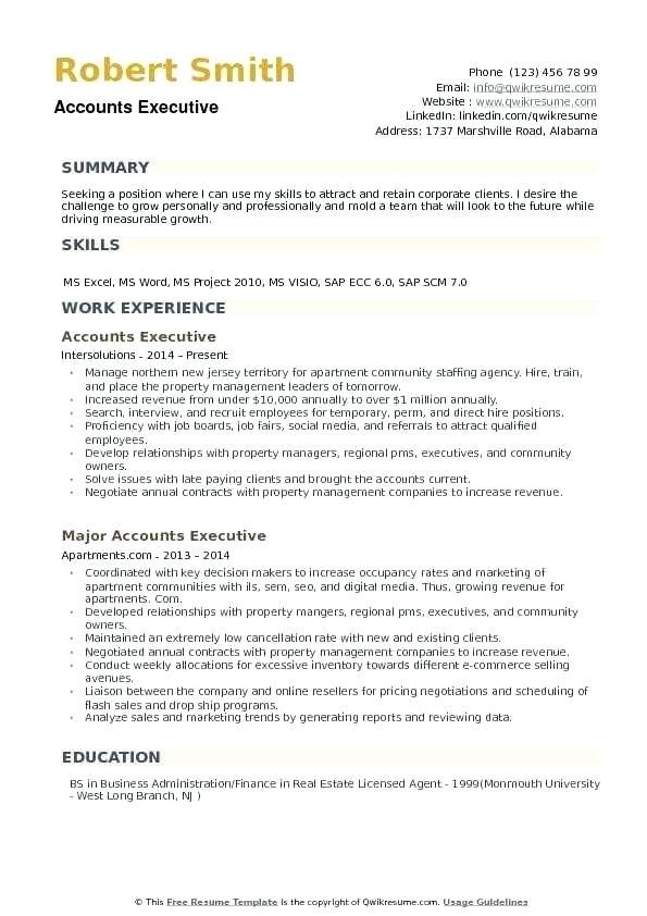 Account Executive Resume Template Account Manager Cv Executive Resume Template Executive Resume Account Executive