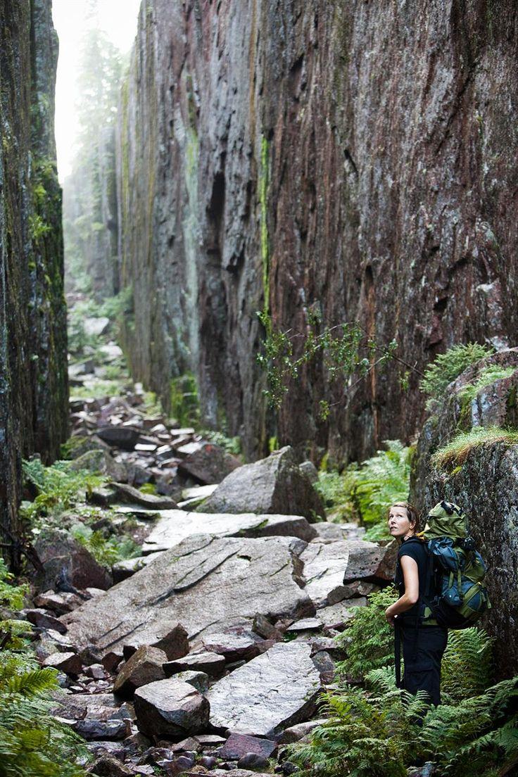 Slåttdalsskrevan is the result of hundreds of millions of years of geological processes. (Skuleskogen, Höga Kusten)