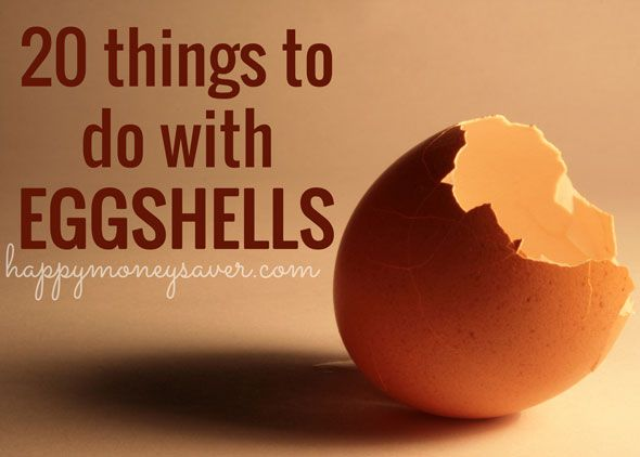 20 Things to Do With Eggshells - Happy Money Saver | Homemade | Freezer Meals | Homesteading