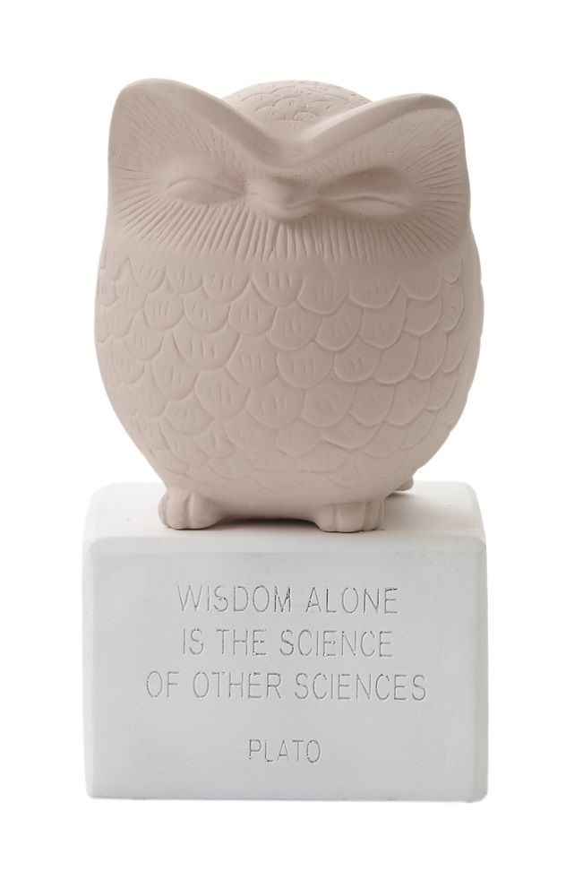 """Owl Medium: """"Wisdom alone is the science of all sciences. Material: Ceramine. Color: Vintage Pink."""
