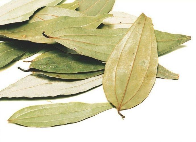 Лавровый лист, положенный в контейнер с мукой, макаронами или рисом, — гарантия того, что там не появятся насекомые.