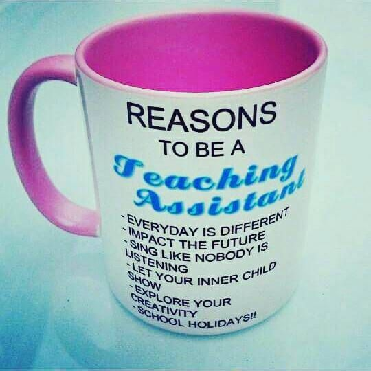 Reasons to be a teaching assistant by Frozenintimegifts on Etsy