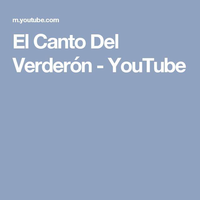 El Canto Del Verderón - YouTube