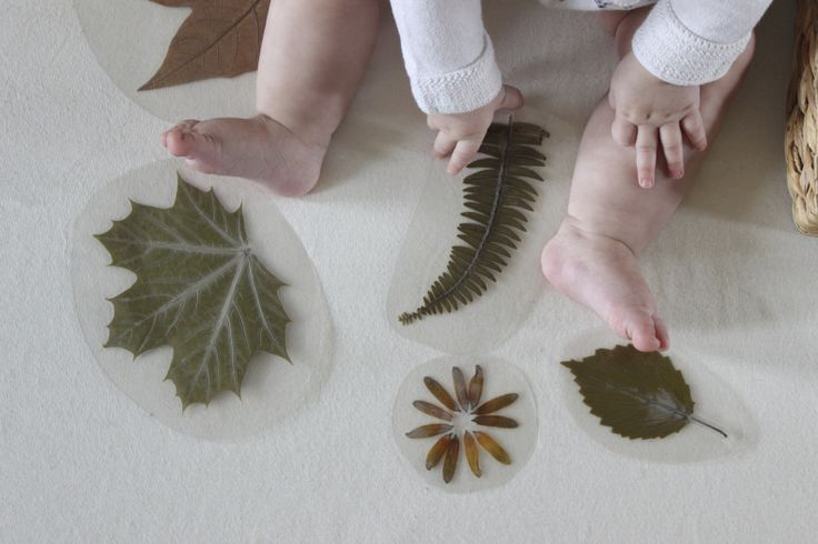 laminated leaf and flower basket - nature exploration for babies - montessori baby