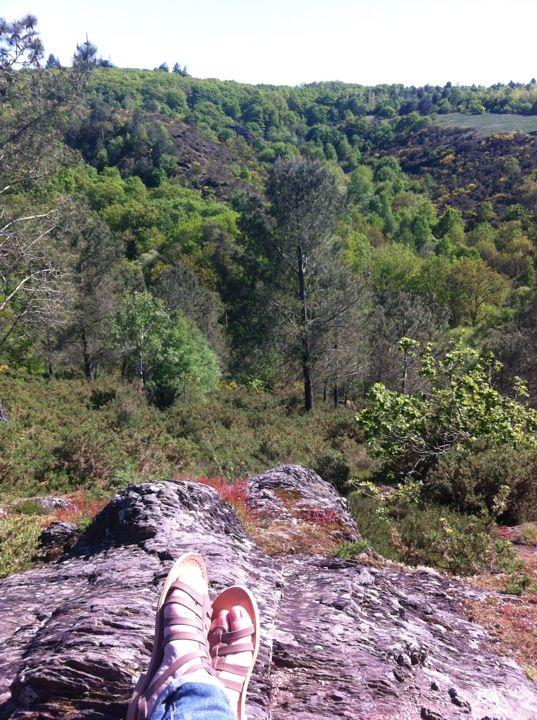 Bien connu 179 best La forêt de Brocéliande images on Pinterest   Brittany  EV53