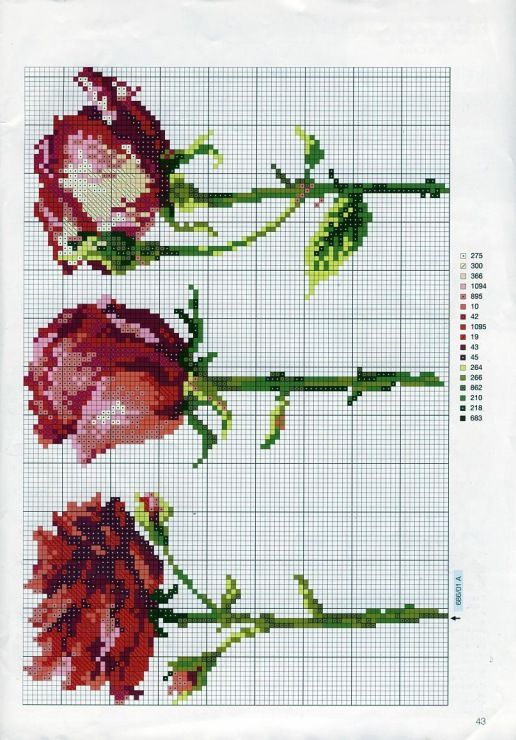 Gallery.ru / Φωτογραφίες # 110 - Τριαντάφυλλα - mornela