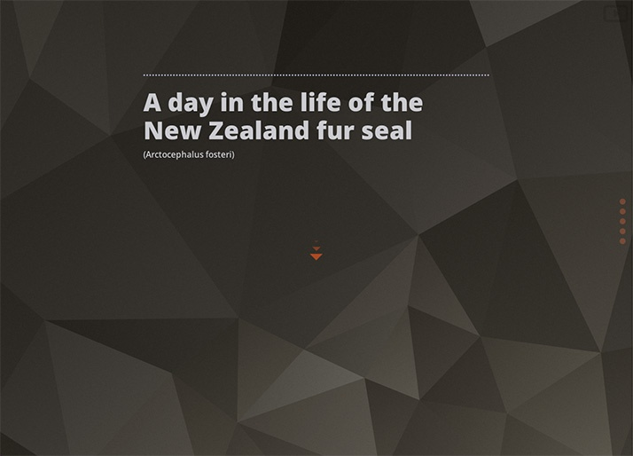 A day in the life of the NZ fur seal: Title Screen