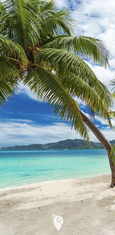 Urlaub Auf Fidschi Bucht Jetzt Eure Sudsee Traumreise Reisen Insel Urlaub Sudsee