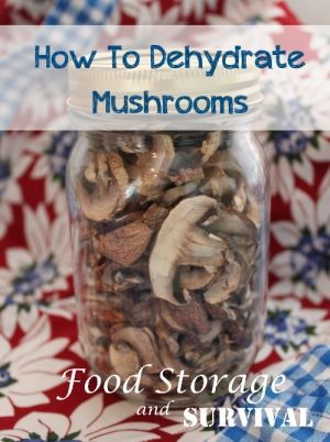 How To Dehydrate Mushrooms