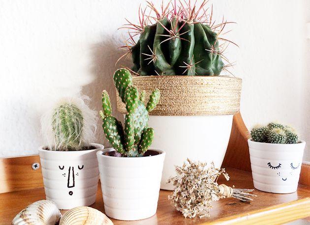 Macetas pintadas DIY / Macetero pintado con spray dorado / diy gold spray paint pot / Gold diy decor / Suculent and cactus gold planters